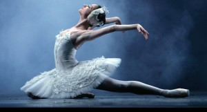 Swan Lake _passion theater (2)